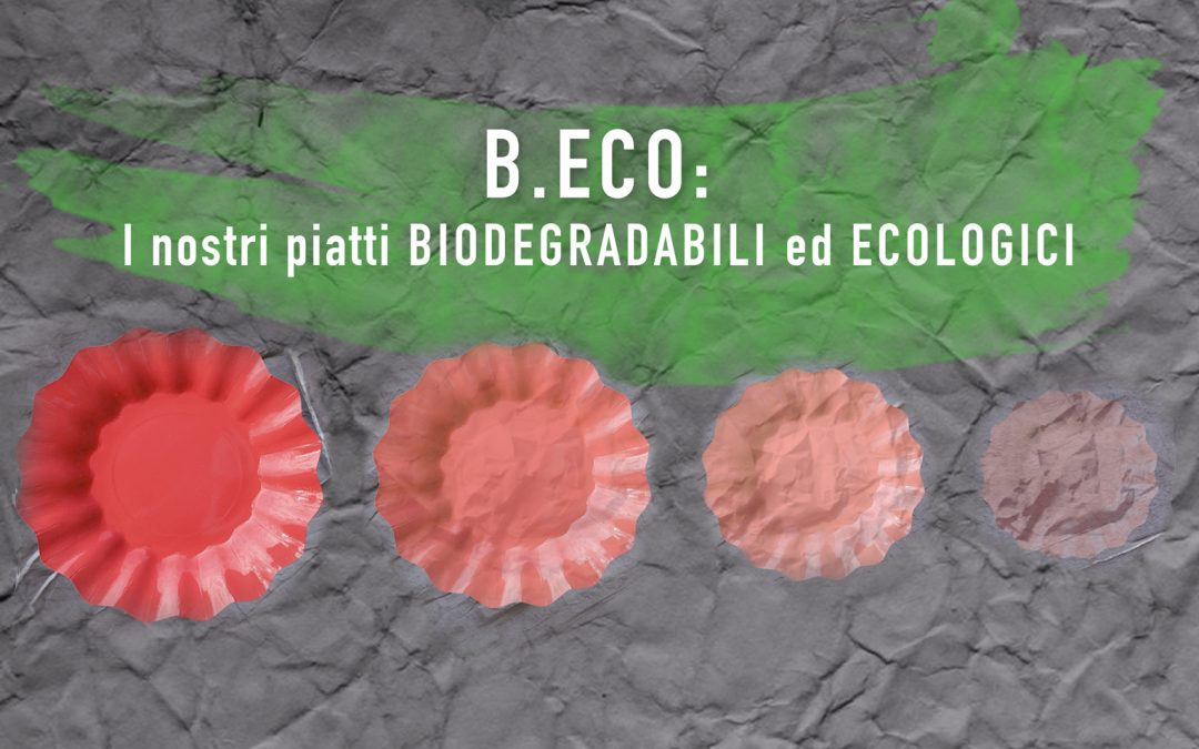 B.ECO: I NOSTRI PIATTI BIODEGRADABILI ED ECOLOGICI