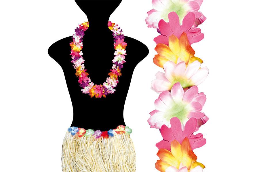 PC_Hawaii_0012_52344